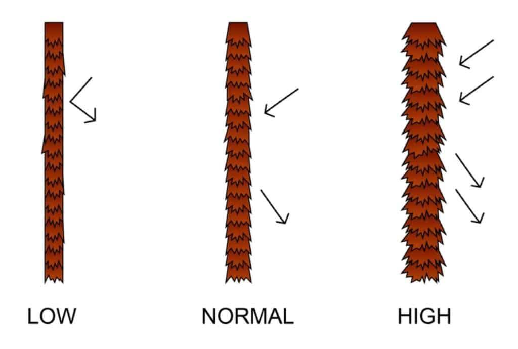 hair porosity type