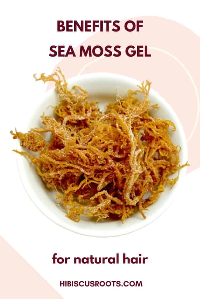 The Secret Benefits Of Sea Moss Gel For Natural Hair Hibiscus Roots